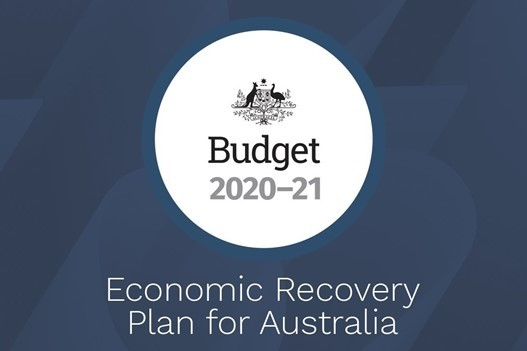 The 2020 Budget for Households